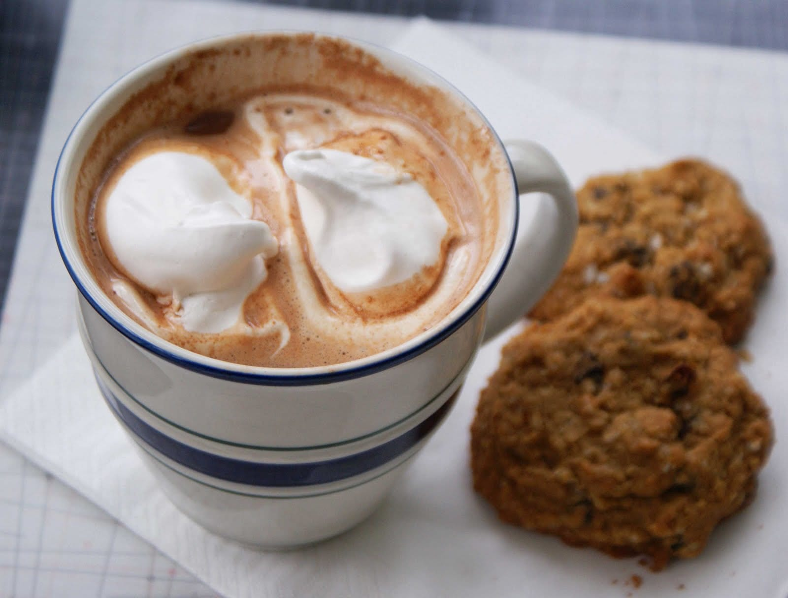 Hot-chocolate-and-cookies | York International